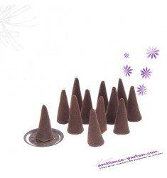 Cônes d'encens - Vanille
