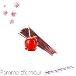 Bâtons d'encens GALÉO x 10 - Pomme d'Amour