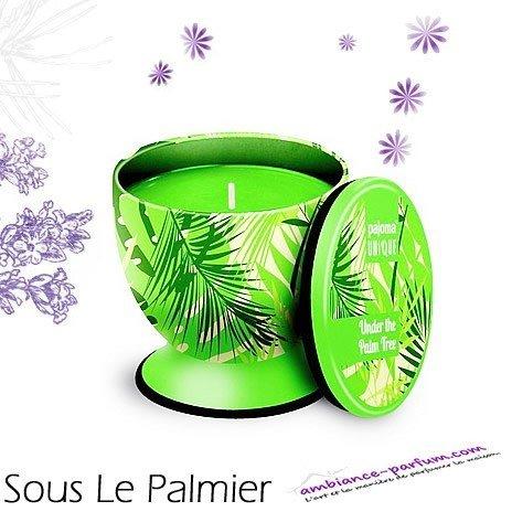 Bougie parfumée Luxe - Sous le Palmier