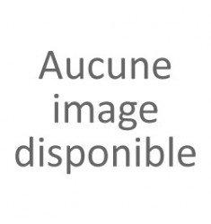 Vaporisateur GOA - Esprit - Joli Coeur